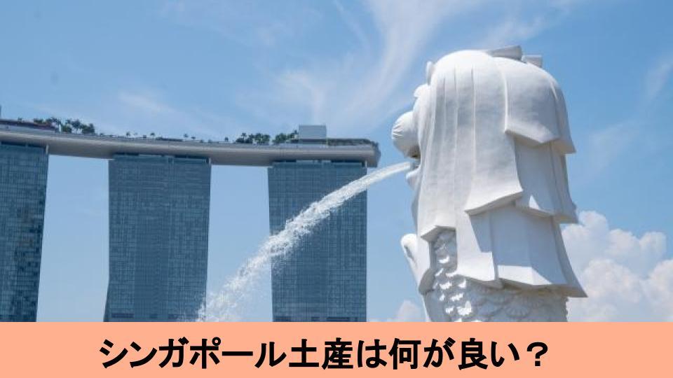 絶対に外さない!ジャンル別シンガポールのおすすめ土産15選