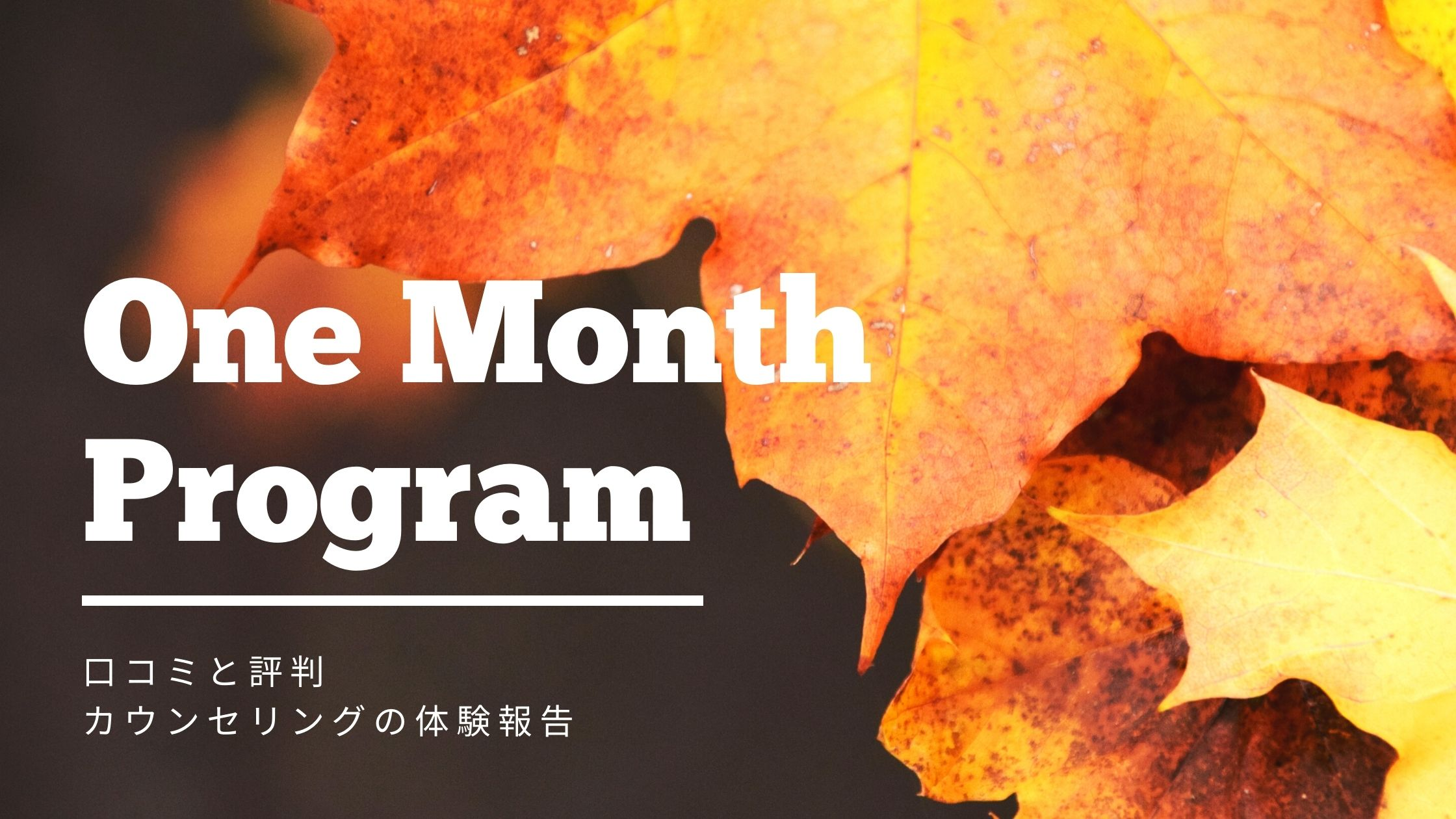 【辛口】One Month Programの口コミと評判 カウンセリングを体験!